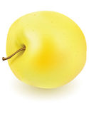 Fresh yellow apple Stock Image