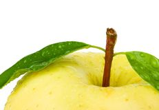 Fresh yellow apple with leaf. Stock Photography