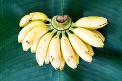 Fresh yellow banana on green leaf Stock Photo
