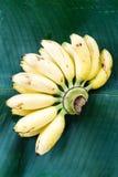 Fresh yellow banana on green leaf Royalty Free Stock Photo