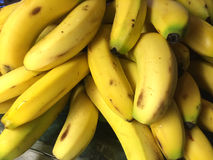 Fresh yellow bananas Stock Image