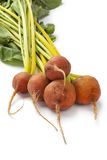 Fresh yellow beets Stock Photography