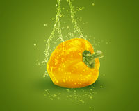 Fresh yellow bell pepper. With water splashes on green background Stock Photo