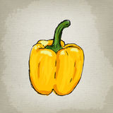 Fresh yellow bell pepper Royalty Free Stock Images