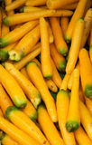 Fresh yellow carrots Royalty Free Stock Images