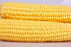 Fresh yellow corn cobs close up. Fresh vegetables. stock photo