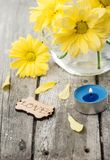 Fresh yellow daisy flowers, sign Love and lit candle Stock Photos