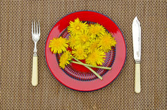 Fresh yellow dandelion flower for food in red plate Stock Images