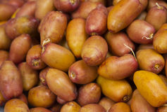 Fresh yellow date Stock Photography