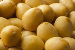 Fresh yellow dates. Full frame Royalty Free Stock Photo