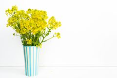 Fresh yellow flowers stand in a vase on a white background. stock images
