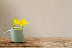 Fresh yellow flowers in white cup with heart shaped holder on grunge wooden table on vintage wall Stock Photography