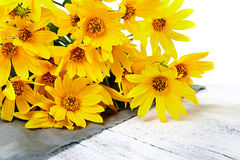 Fresh yellow flowers on wooden background Royalty Free Stock Photo