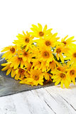 Fresh yellow flowers on wooden background Stock Image