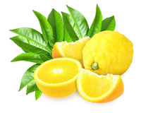 Fresh yellow lemons with green leaf Royalty Free Stock Images