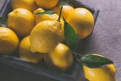 Fresh yellow lemons stock photos