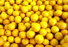 Fresh yellow lemons Royalty Free Stock Photos