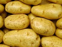 Fresh yellow market potatoes Stock Photos
