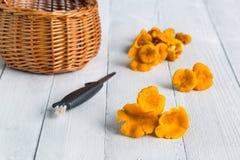 Fresh yellow mushrooms on white table. Fresh yellow mushrooms on white wooden table Stock Photo