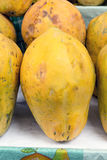 Fresh yellow papaya in a market in Peru, natural look. Stock Photography