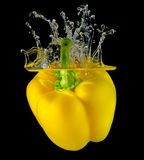 Fresh yellow paprika splash in water on black back Royalty Free Stock Images