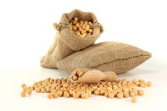 Fresh yellow peas Royalty Free Stock Images