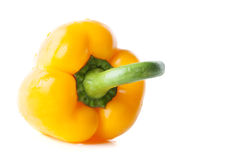 Fresh yellow pepper Stock Photos