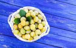 Fresh yellow plums. Ripe fruits in a plate on blue boards background royalty free stock photos