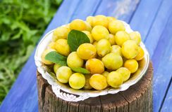 Fresh yellow plums. Ripe fruits in a plate on stump. Fresh yellow plums. Ripe fruits in a plate on wood stump royalty free stock image