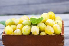 Fresh yellow plums. Ripe fruits. In a wooden box stock photos