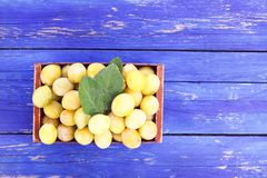 Fresh yellow plums. Ripe fruits in a wooden box on blue boards background. royalty free stock photos