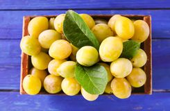 Fresh yellow plums. Ripe fruits in a wooden box on boards background royalty free stock image