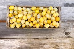 Fresh yellow plums. Ripe fruits in a wooden box on boards background royalty free stock photo