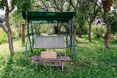 Fresh yellow plums. Ripe fruits in a wooden box on garden swing in sunny summer day royalty free stock photo