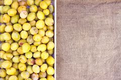 Fresh yellow plums. Ripe fruits in a wooden box on rough burlap. Background stock photo