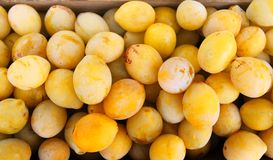 Fresh yellow plums. Ripe fruits in a wooden box in summer garden. Fresh yellow plums harvest. Ripe sweet juicy fruits in a wooden box close up stock photography