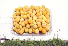Fresh yellow plums. Ripe fruits in a wooden box on white boards background stock images