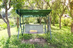 Fresh yellow plums. Ripe sweet fruits in a wooden box on garden swing in sunny summer day royalty free stock image