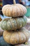 Fresh yellow pumpkin on the market Stock Photography