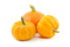 Fresh yellow pumpkin Royalty Free Stock Photography