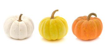 Fresh yellow pumpkin,white pumpkin and orange pumpkin Royalty Free Stock Images