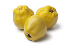 Fresh yellow Quinces. On white background Stock Image