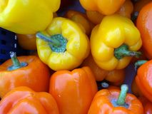 Fresh Yellow and Red Capsicums Stock Photos