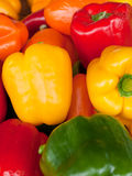 Fresh yellow red and green peppers Stock Photography
