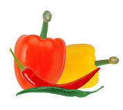Fresh yellow and red paprika pepper and hot chilli peppers Royalty Free Stock Images