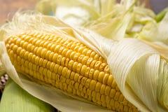 Fresh corn on rustic wooden table, closeup Stock Photos