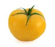 Fresh yellow tomato with waterdrops. Fresh tomato with stem covered with waterdrops royalty free stock photo