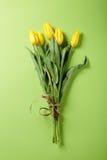 Fresh yellow tulip on green background Royalty Free Stock Photo