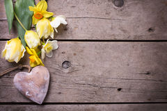 Fresh yellow tulips and daffodils flowers  and decorative heart Stock Photography
