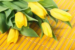 Tulips on placemats Royalty Free Stock Photo
